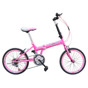 "20"" Chinese 21sp Non-Index Steel Frame Folding Bicycle"