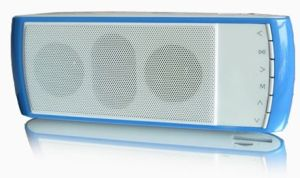 Portable Speaker (P4008) FM Radio SD/ TF Card, USB Decoder, Line out (Earphone) , and Line in