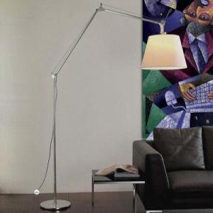 Chinese Supplier Livingroom Aluminum Reading Fish Floor Lamp pictures & photos