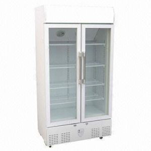 Double Door Showcase Cooler with Light Canopy