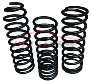 Custom Widly Usage Steel Coil Compression Spring for Auto Car
