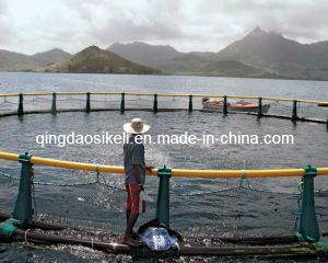 Fishing Machine pictures & photos
