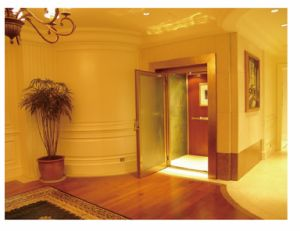 Small House Elevator Home Lift with Manual Door (LL-107) pictures & photos
