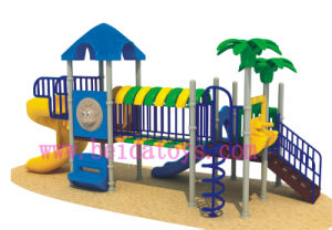 Outdoor Playground Playground (BD-A563)