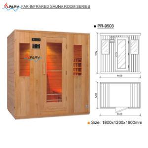 Pary Far-Infrared Sauna Room (Pr-9503)