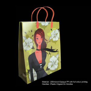 Plastic Shopping Bag with Custom Logo pictures & photos