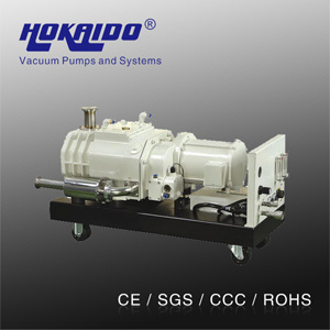 Hokaido Dry Screw Spiral Vacuum Pump (RSE400) pictures & photos