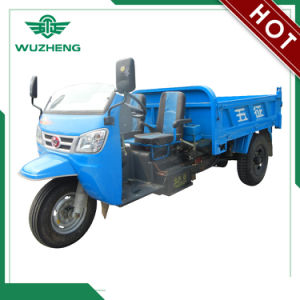 Diesel Chinese Waw Three-Wheeler with Sunshade for Sale (WF3B2521104) pictures & photos