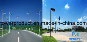 Roadway Lighting Pole /Street Light Pole (MG-RLP005) pictures & photos