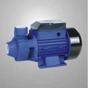 Vortex Pump (QB-60)