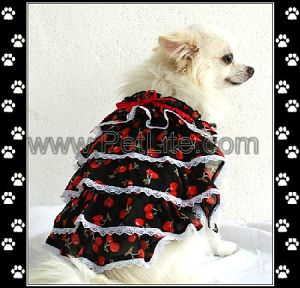 Pet Clothes in Stock, Popular Dog Clothes (S8124)