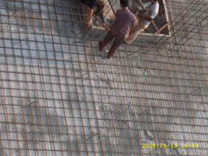 Welded Wire Mesh (R-DHW) pictures & photos