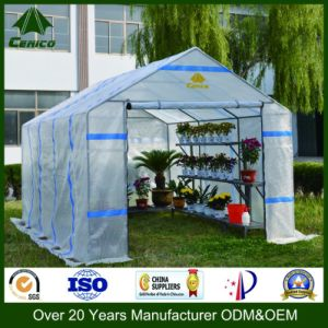 Greenhouse, Garden House and Tent pictures & photos