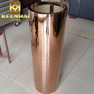 304 Conical Stainless Steel Planter Pot Flower Pot pictures & photos
