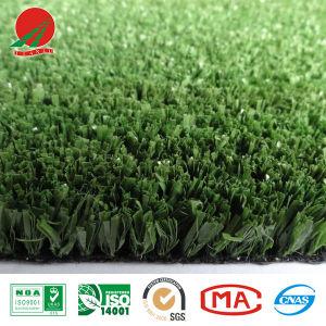 Golf Artificial Grass of High Density
