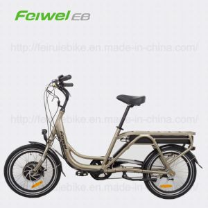 48V High Power Electric Cargo Bicycle with Pedal (TDN03Z) pictures & photos