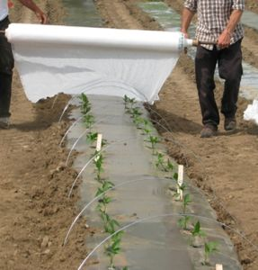 Floating Row Covers for Agricultural Use pictures & photos