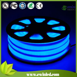 10*24mm 12V Blue LED Neon Light pictures & photos