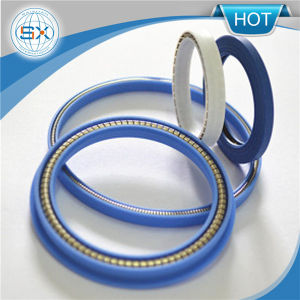 PTFE Spring Energized Seals pictures & photos