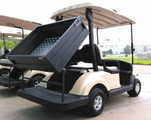 Cheap China Supplier New Condition 2 Seats Golf Cart with Utility Cargo Box