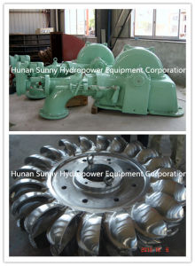 Hydro (Water) Pelton Turbine-Generator High Capacity 2000~6000kw/Hydropower Turbine Alternator pictures & photos