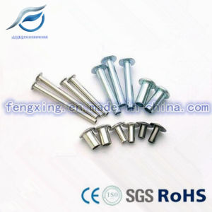 Customized Stainless Steel Button Head Semi Tubular Rivet pictures & photos