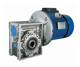 Worm Gearbox with Nmrw pictures & photos