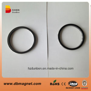 Plastic Injection Bonded NdFeB Magnet pictures & photos