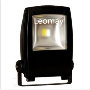 10W LED Flood Light High Power with Ce RoHS pictures & photos