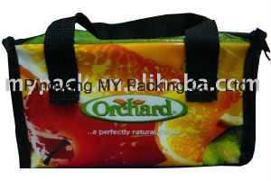 Cheap Price BOPP Laminated Non Woven Picnic Cooler Lunch Bag pictures & photos