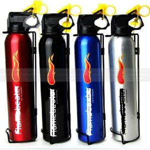 0.5kg Dry Powder Fire Extinguisher Use for Car pictures & photos