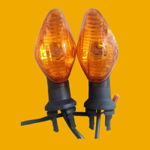 Motorcycle Turning Lamp, Winker Lamp, Motorcycle Spare Parts pictures & photos