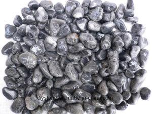 Black Jade Stone for Garden pictures & photos