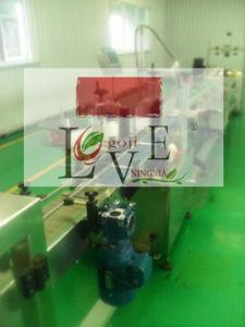 Goji--Professional OEM in Bulk
