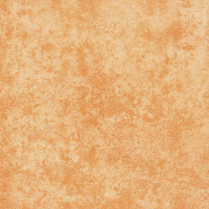 Buiding Ceramic Matt Rustic Tile for Floor 600X600 (RLJ6001)