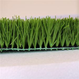 New Technology! Non-Infill Artificial Grass for Football