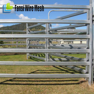 Galvanized Pipe Portable Horse Yard Panels pictures & photos
