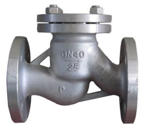 Swing Stainless Steel Check Valve pictures & photos