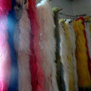 Quality Tibet Sheep Lamb Fur Skin pictures & photos