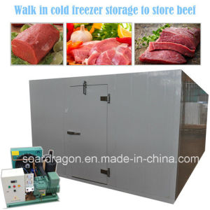 Low Temperature Walk in Cold Freezer Storage to Store Beef pictures & photos
