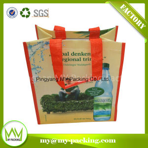 Various Fabric Full Color Print Laminated PP Shopper Bag pictures & photos