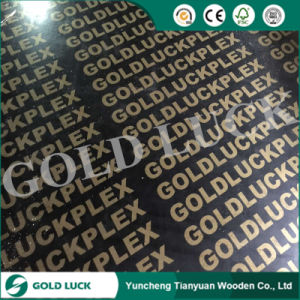 Factory-Directly Sales Film Faced Marine Plywood pictures & photos