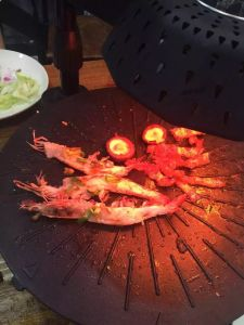 BBQ Grill Branded 3D Infrared Electric Induction Grill (ZJLY) pictures & photos