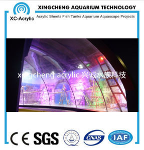 Decoration for Aquarium/Fish Aquarium/Glass Aquarium pictures & photos