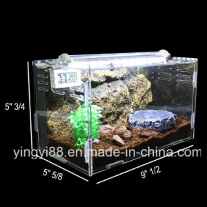 Top Quality Acrylic Reptile Terrarium Cage for Sale pictures & photos