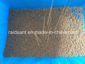 Hot Sales Rice Bran Wax Pelletizer pictures & photos