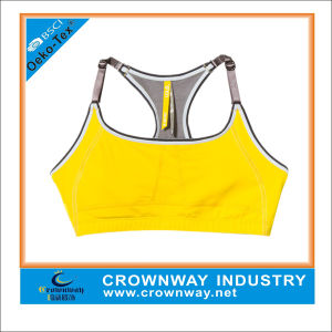 Wholesale Best Plus Size Sport Bra with Flat Lock Stitching pictures & photos