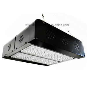 IP65 Waterproof LED Grow Lights Can Be Controlled by Mobile APP pictures & photos