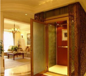 High Quality Villa Passenger Elevator Lift pictures & photos