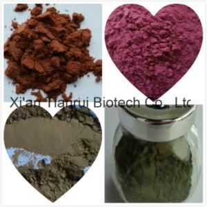 Caulispolygonimultiflori Extract /Polygonum Multiflorum Extract/ pictures & photos
